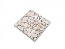 ВАГИ скляні GS 203 Stone